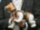 Präsentation von Sonys Roboterhund Aibo auf einer Veranstaltung inTokio. Foto: -/Kyodo/dpa